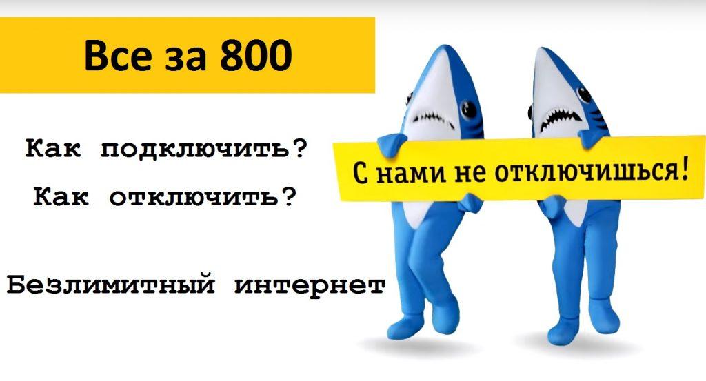 Постоплатный тариф Билайн «Всё за 800»